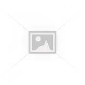 Mechaninei pavarų dėžei (5)